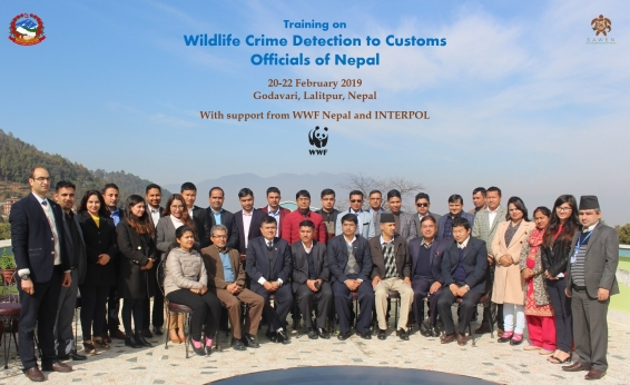 Wildlife Crime Detection Training to Customs Officials Completed